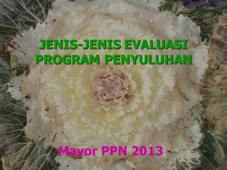 JENIS-JENIS EVALUASI PROGRAM PENYULUHAN Mayor PPN 2013.