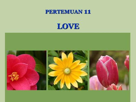 PERTEMUAN 11 LOVE. LOVE IS.............. Interpersonal attraction, secondary positive reinforces, complementary needs affection that one individual expresses.