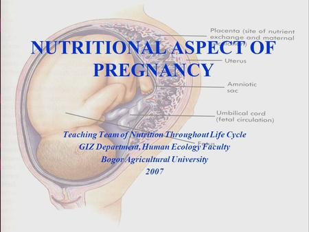 1 NUTRITIONAL ASPECT OF PREGNANCY Teaching Team of Nutrition Throughout Life Cycle GIZ Department, Human Ecology Faculty Bogor Agricultural University.