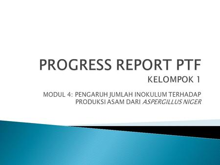 PROGRESS REPORT PTF KELOMPOK 1