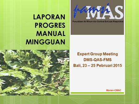 LAPORAN PROGRES MANUAL MINGGUAN Expert Group Meeting DMS-QAS-FMS Bali, 23 – 25 Pebruari 2015 Monev-CMAC.