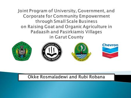 Okke Rosmaladewi and Rubi Robana. Low income Men: $2-$3 /day Women: $1,8-$2,5 /day Lack or lower education Literacy, health and Purchasing power Low Productivity.
