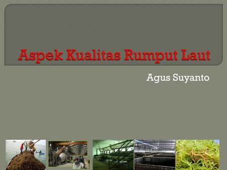 Laporan Praktikum Kesehatan Lingkungan Ppt Download