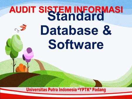 AUDIT SISTEM INFORMASI Standard Database & Software.