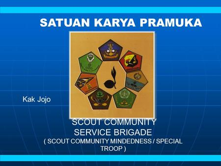 ( SCOUT COMMUNITY MINDEDNESS / SPECIAL TROOP )