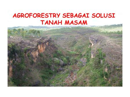 AGROFORESTRY SEBAGAI SOLUSI TANAH MASAM. ABSTRACT Soil in the tropics environment usually dominated by oxisol and ultisol soil that characterized by very.