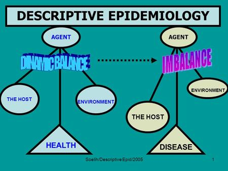 Soelih/Descriptive Epid/20051 AGENT DESCRIPTIVE EPIDEMIOLOGY THE HOST ENVIRONMENT HEALTH AGENT THE HOST ENVIRONMENT DISEASE.