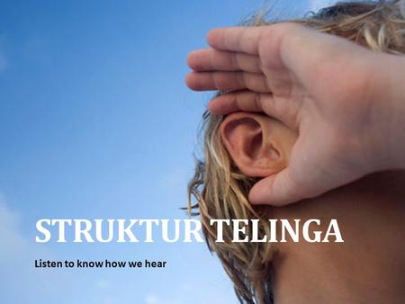 STRUKTUR TELINGA Listen to know how we hear. Struktur Telinga.