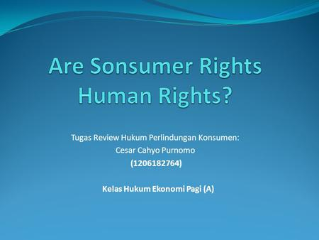 Are Sonsumer Rights Human Rights?