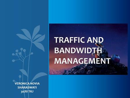 TRAFFIC AND BANDWIDTH MANAGEMENT