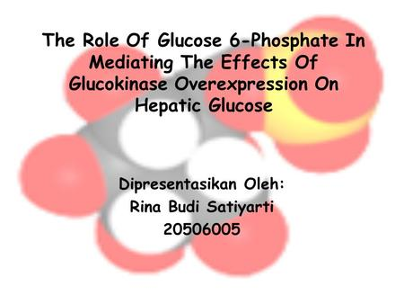The Role Of Glucose 6-Phosphate In Mediating The Effects Of Glucokinase Overexpression On Hepatic Glucose Dipresentasikan Oleh: Rina Budi Satiyarti 20506005.
