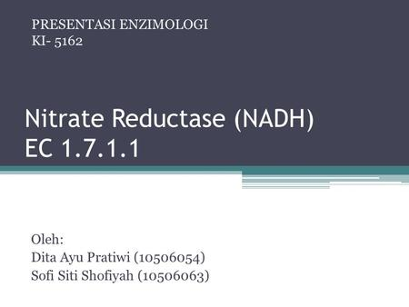 Nitrate Reductase (NADH) EC