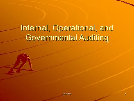 Sgt-bab231 Internal, Operational, and Governmental Auditing.