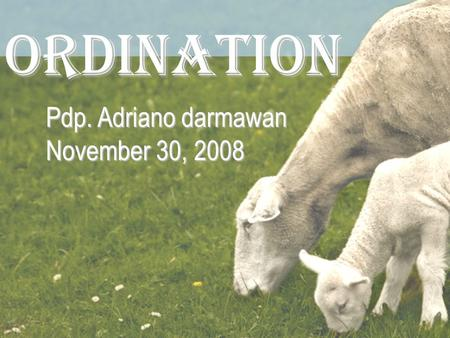 ORDINATION Pdp. Adriano darmawan November 30, 2008.