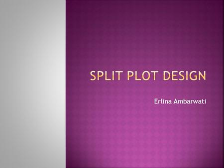 SPLIT PLOT DESIGN Erlina Ambarwati.