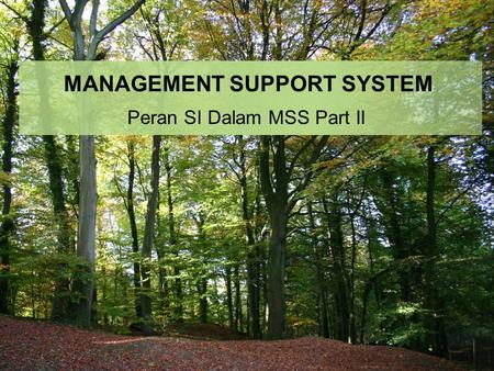 MANAGEMENT SUPPORT SYSTEM Peran SI Dalam MSS Part II.