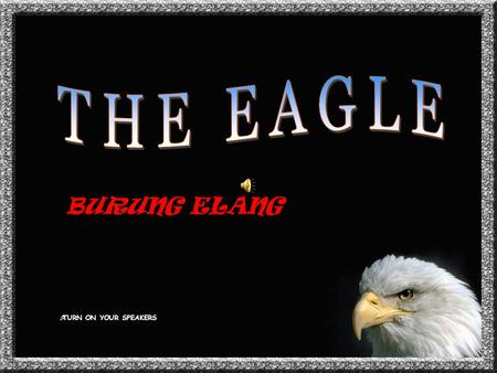 THE EAGLE BURUNG ELANG TURN ON YOUR SPEAKERS.