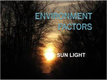 ENVIRONMENT FACTORS SUN LIGHT.
