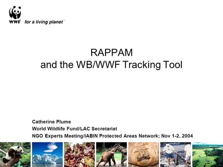 RAPPAM and the WB/WWF Tracking Tool Catherine Plume World Wildlife Fund/LAC Secretariat NGO Experts Meeting/IABIN Protected Areas Network; Nov 1-2, 2004.