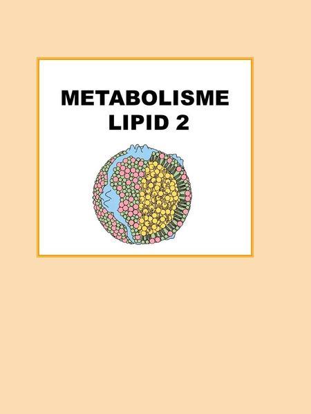 Arti kata Lipoprotein