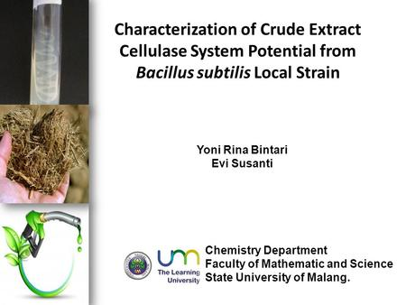 Characterization of Crude Extract Cellulase System Potential from Bacillus subtilis Local Strain Yoni Rina Bintari Evi Susanti Chemistry Department Faculty.