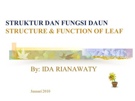 STRUKTUR DAN FUNGSI DAUN STRUCTURE & FUNCTION OF LEAF By: IDA RIANAWATY Januari 2010.
