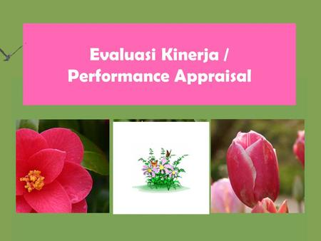 Evaluasi Kinerja / Performance Appraisal Pengertian Performance appraisal: the measurement and assessment of an employee's job performance.