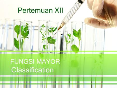 Pertemuan XII FUNGSI MAYOR Classification.