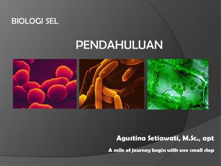 BIOLOGI SEL A mile of journey begin with one small step Agustina Setiawati, M.Sc., apt PENDAHULUAN.
