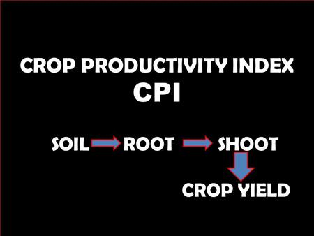 CROP PRODUCTIVITY INDEX CPI SOIL ROOT SHOOT CROP YIELD.