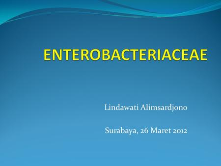 Lindawati Alimsardjono Surabaya, 26 Maret 2012. MAJOR CATEGORY I (GRAM-NEGATIVE EUBACTERIA THAT HAVE CELL WALLS) Group 5 : Facultatively anaerobic Gram-negative.