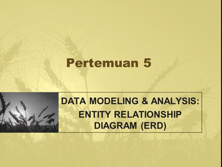 DATA MODELING & ANALYSIS: ENTITY RELATIONSHIP DIAGRAM (ERD)