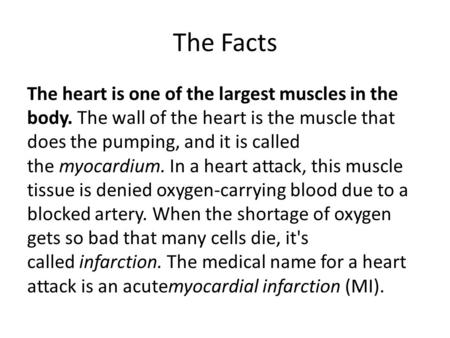 The Facts The heart is one of the largest muscles in the body. The wall of the heart is the muscle that does the pumping, and it is called the myocardium.