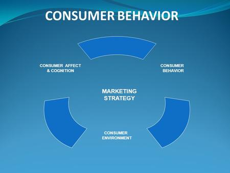 CONSUMER AFFECT & COGNITION CONSUMER ENVIRONMENT CONSUMER BEHAVIOR MARKETING STRATEGY CONSUMER BEHAVIOR.