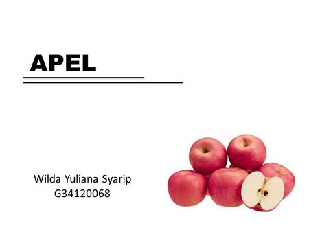 APEL Wilda Yuliana Syarip G34120068.