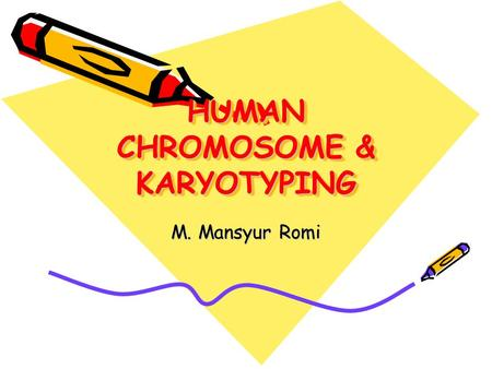 HUMAN CHROMOSOME & KARYOTYPING M. Mansyur Romi. CHROMOSOME The highest order of DNA coiling Each species has a characteristic number and size of chromosomes,