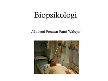 Biopsikologi Akademi Perawat Panti Waluya. Pendekatan Biologi A physiological explanation – Describe the mechanism that produces a behavior – A migrating.