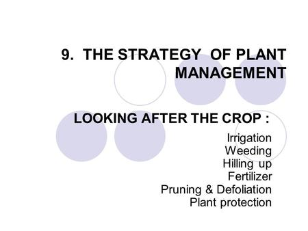9. THE STRATEGY OF PLANT MANAGEMENT LOOKING AFTER THE CROP : Irrigation Weeding Hilling up Fertilizer Pruning & Defoliation Plant protection.