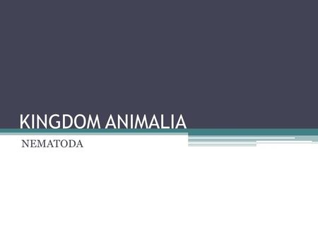 KINGDOM ANIMALIA NEMATODA.