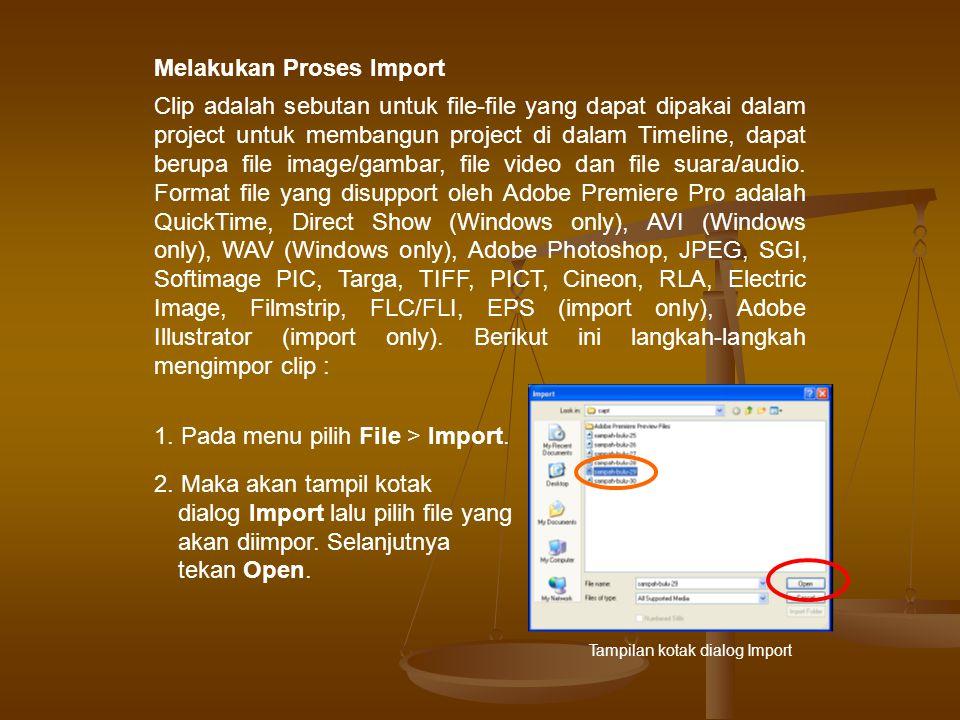 3.Maka file yang telah diimpor akan tampil di dalam Project Window.