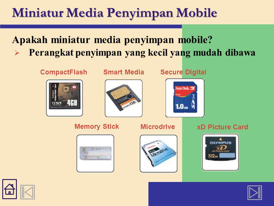Miniatur Media Penyimpan Mobile Apakah USB flash drive.