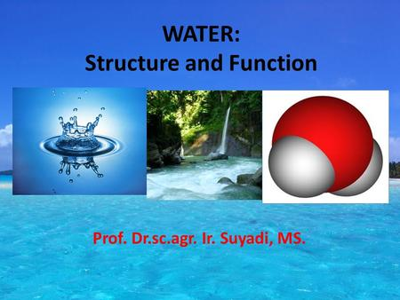 WATER: Structure and Function Prof. Dr.sc.agr. Ir. Suyadi, MS.