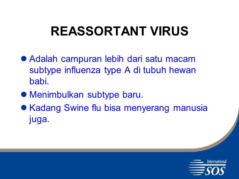 GEJALA PENYAKIT Hampir mirip seperti gejala flu : Demam mendadak > 38 derajat Celcius,batuk,pilek,sakit badan atau sakit tenggorokan.