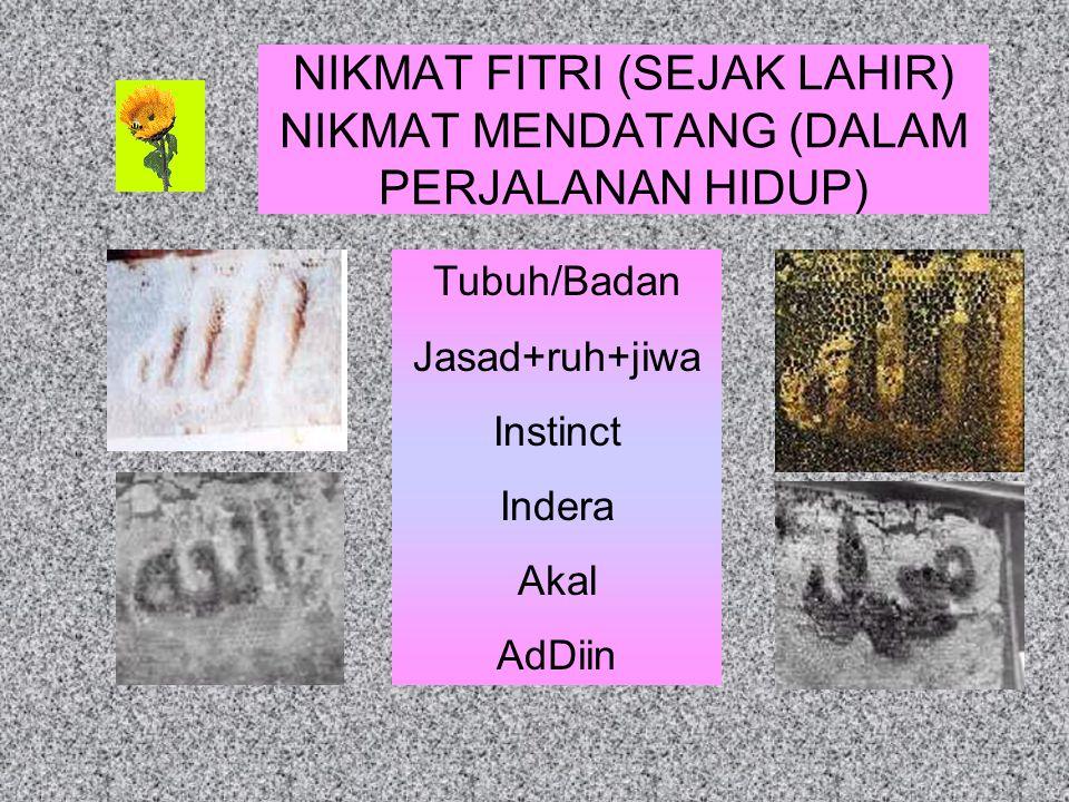 NIKMAT FITRI (SEJAK LAHIR) NIKMAT MENDATANG (DALAM PERJALANAN HIDUP) Tubuh/Badan Jasad+ruh+jiwa Instinct Indera Akal AdDiin