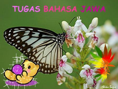 Omah Joglo Ppt Download