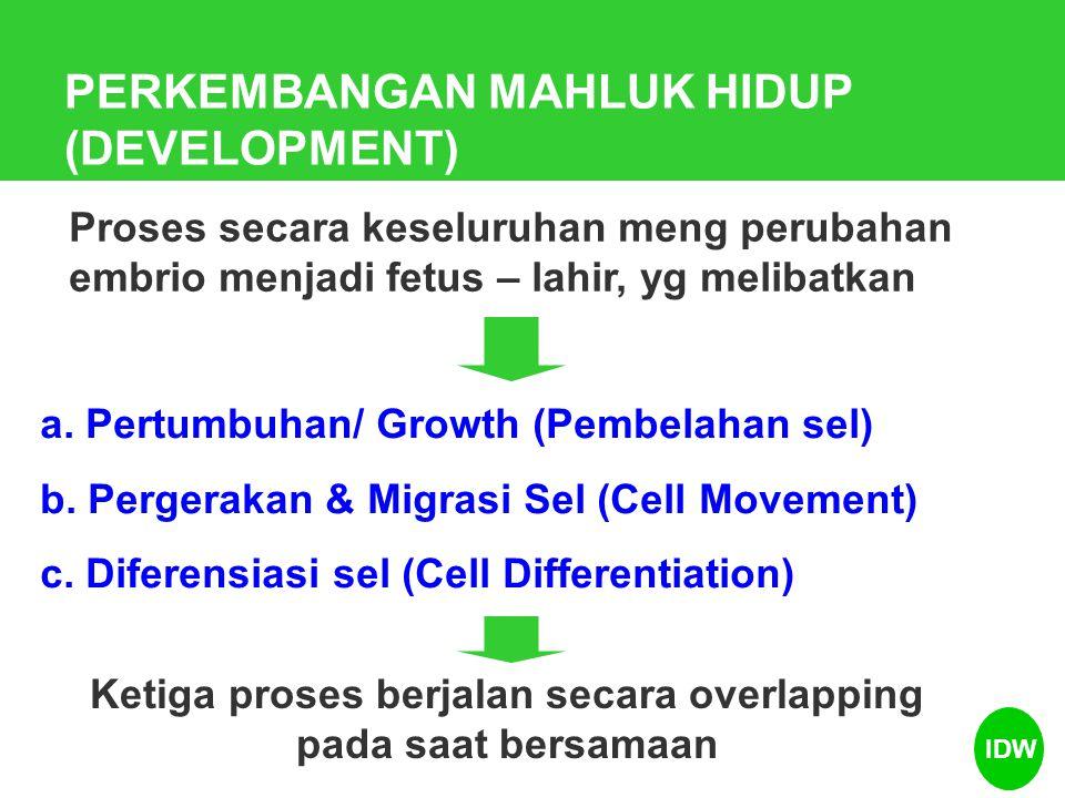 Proses Perkembangan mahluk hidup IDW