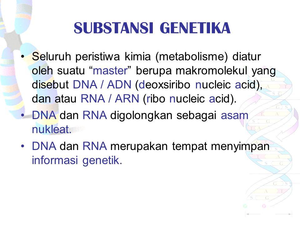 S UBSTANSI GENETIKA Seluruh peristiwa kimia (metabolisme) diatur oleh suatu master berupa makromolekul yang disebut DNA / ADN (deoxsiribo nucleic acid), dan atau RNA / ARN (ribo nucleic acid).