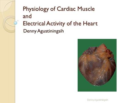 Physiology of Cardiac Muscle and Electrical Activity of the Heart Denny Agustiningsih.