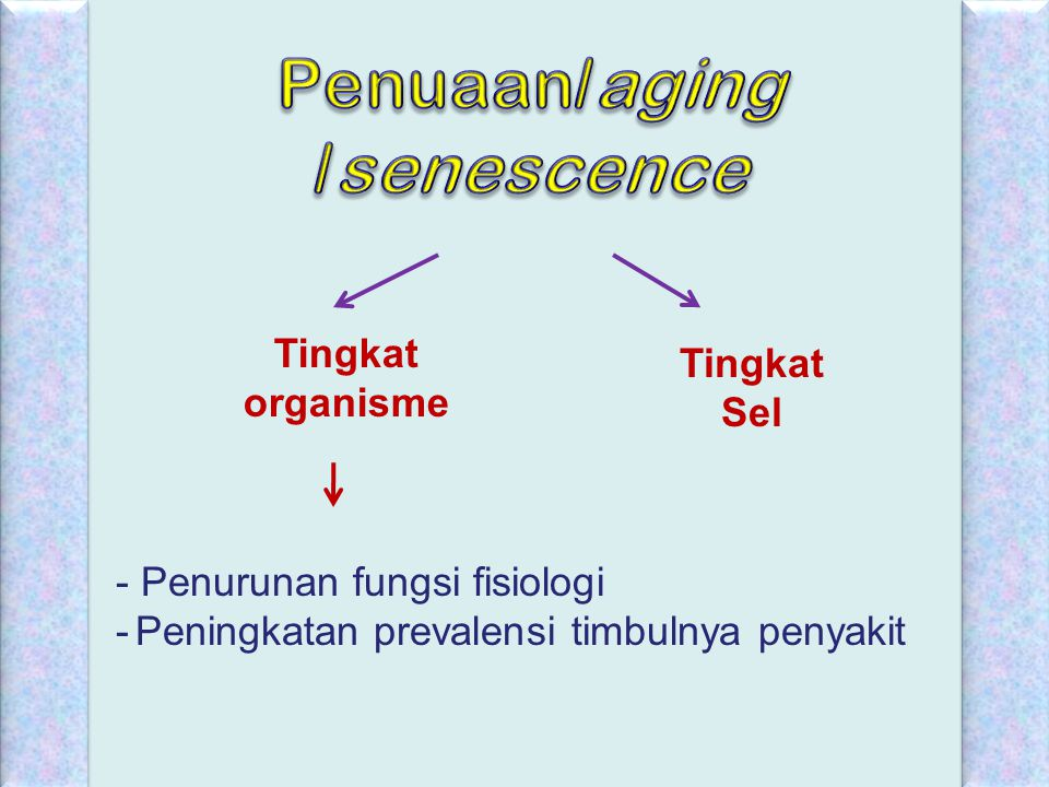 Pada individu dewasa sehat, fungsi- fungsi fisiologi tetap berlangsung tetapi dipelihara pada kondisi basal.