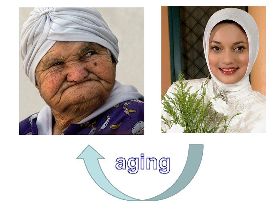 Pada umumnya ciri-ciri penuaan muncul sebagai akibat ketidakmampuan sel untuk beradaptasi terhadap kondisi stress